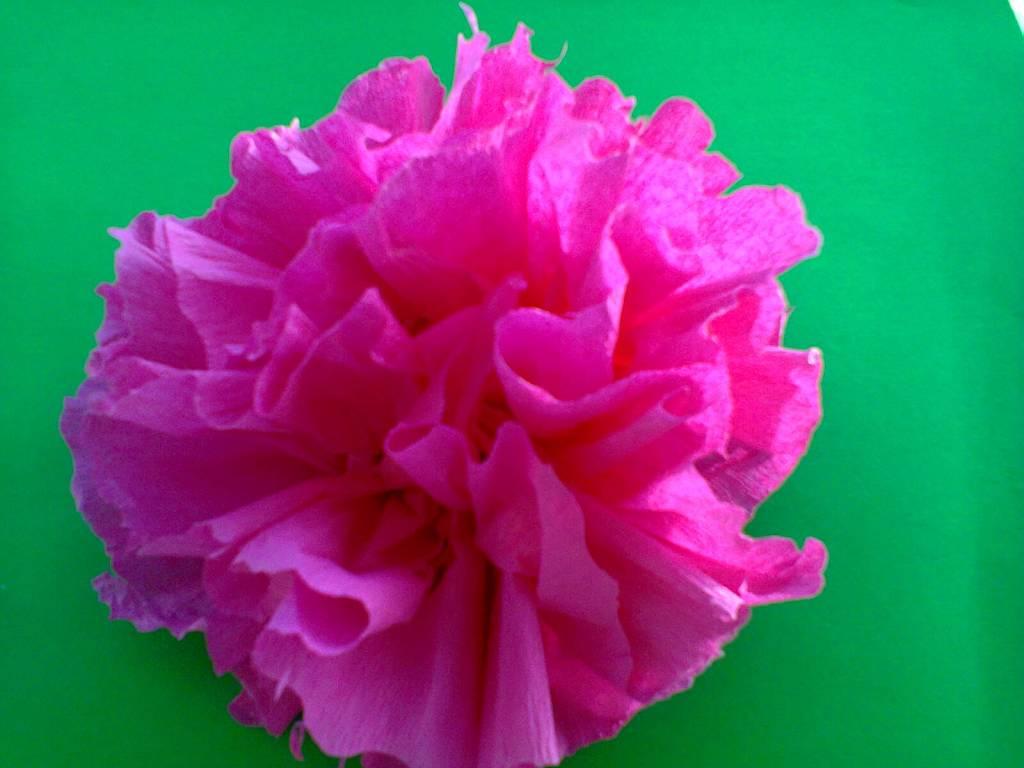 floare din hartie creponata