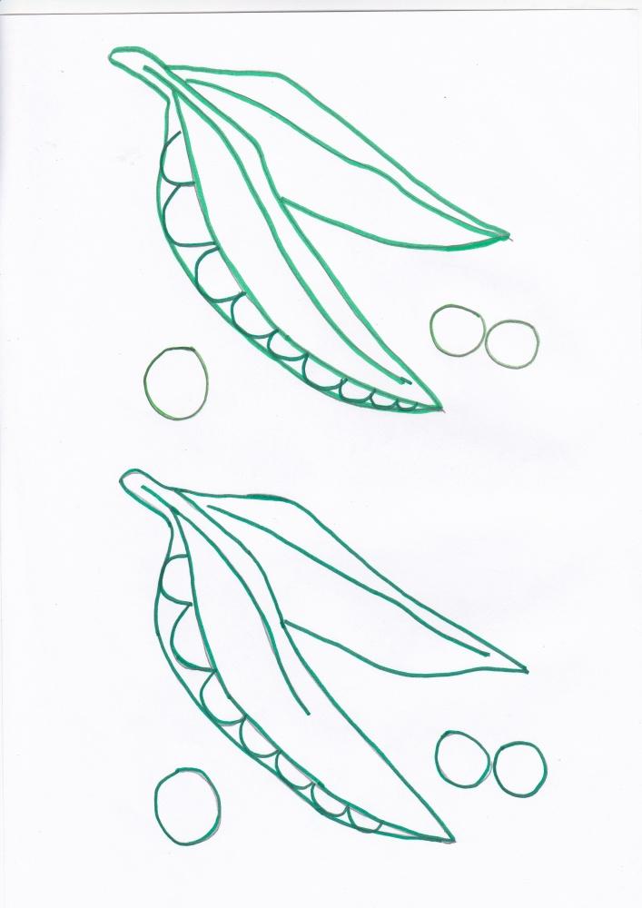 Imagini de colorat cu legume de toamna (6/6)