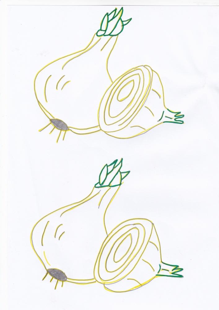 Imagini de colorat cu legume de toamna (5/6)