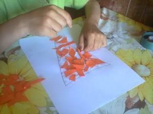 morcovul- activitate gradinita