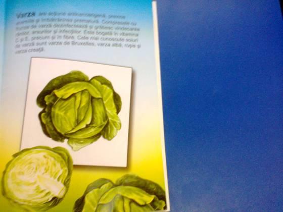 imagini legume primavara