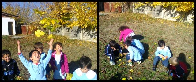 jocuri cu frunze